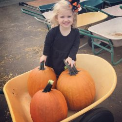 Family Fun Things to do in the Fall in Huntsville