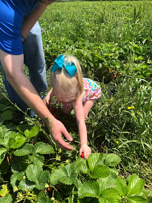 20 Summer Bucket List Activities - Your Guide to Summer Fun. Family fun activities to do in and around Huntsville and the North Alabama area. Pick strawberries at Brown Farms
