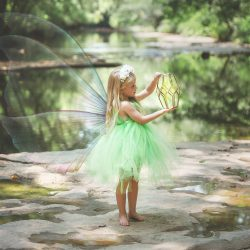 Raley's Tinker Bell Photoshoot