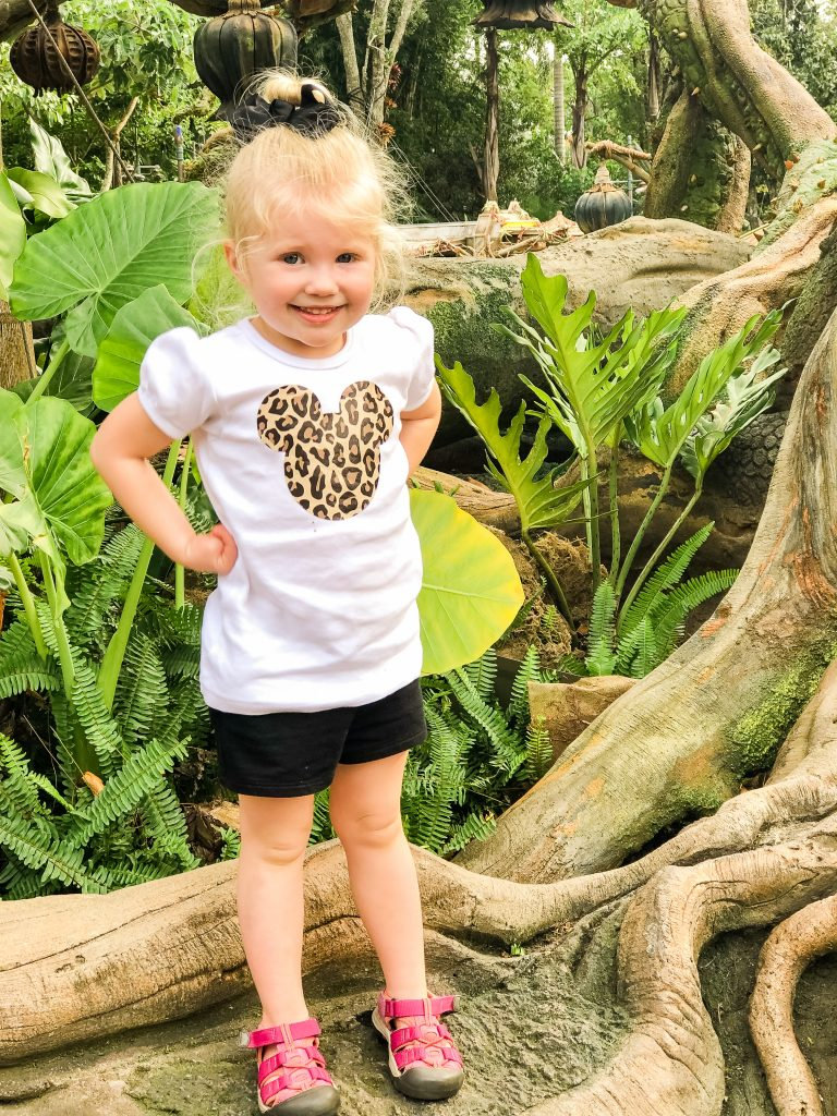 Disney's Animal Kingdom tips. How to spend a day at Disney's Animal Kingdom. Disney World family vacation. Disney World with toddlers