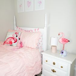 Audrey's Flamingo Big Girl Bedroom