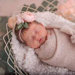 Hannah's Newborn Photo Shoot